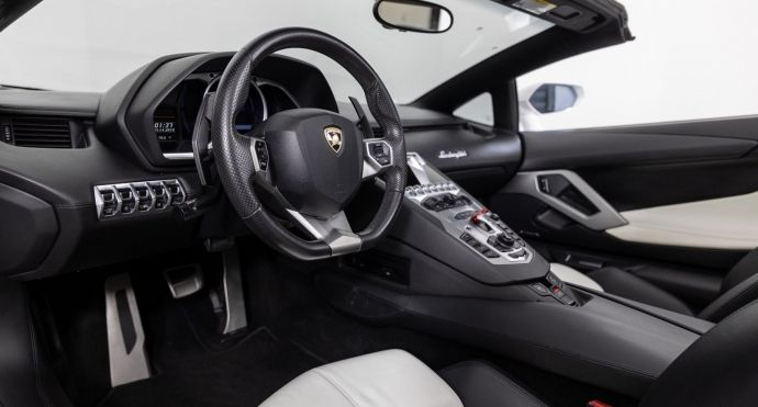 2013 Lamborghini Aventador LP700-4 #1